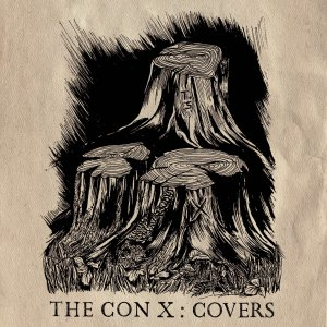 Image result for the con x covers