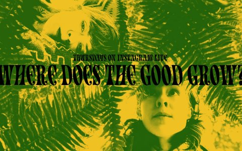 Where Does The Good Grow? Banner